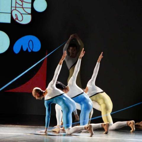 Divina.com: The Art of Adi Da with the Florence Dance Company